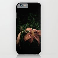 iPhone & iPod Case featuring Wilted Lily  by Melissa Batchelder Photography