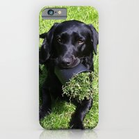 When Life Gives You Flowerpots iPhone 6 Slim Case