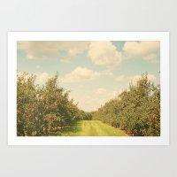 Allée De Pommes Art Print