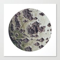 Planetary Bodies - Green Tree Canvas Print