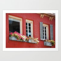 Window Boxes Art Print