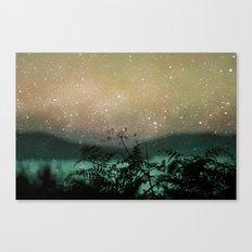 Night Sky Flowers Canvas Print