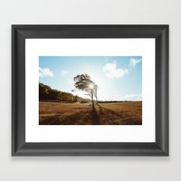 Standing In The Sun Framed Art Print