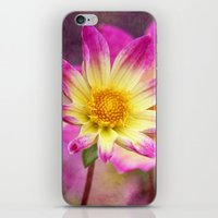 Sweet As Candy iPhone & iPod Skin