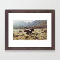 Three Meadow Moose Framed Art Print