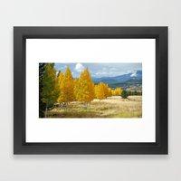 Aspens in Flagstaff Framed Art Print