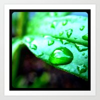 Macro leaves and water droplets. Art Print