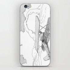 Plane and Rocks iPhone & iPod Skin