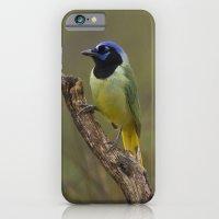 Green Jay iPhone 6 Slim Case