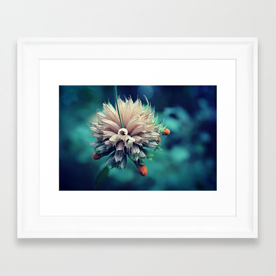 Spring Flower 10 Framed Art Print