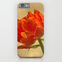 iPhone & iPod Case featuring Orange Tulips by jacqi