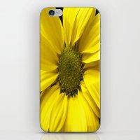 The Yellow one iPhone & iPod Skin