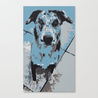 Catahoula Catawhat Canvas Print