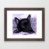 Purple Frenchie Framed Art Print
