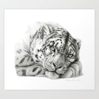 Pensive Snow Leopard G20… Art Print