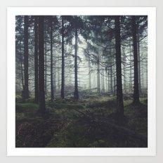 Through The Trees Art Print