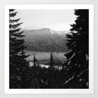 Snowy View Along The Tra… Art Print