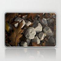 Oak leaves and stones Laptop & iPad Skin