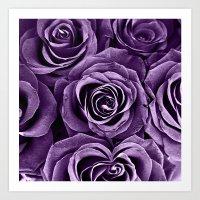 Rose Bouquet in Purple Art Print