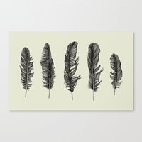 Lucky Five Feathers Canvas Print