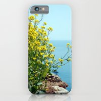 Rape Flowers 1 iPhone 6 Slim Case