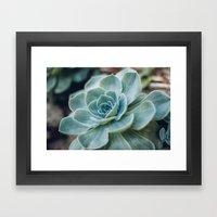 Succulent - Part I Framed Art Print