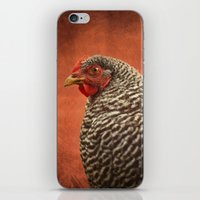 Red Chicken iPhone & iPod Skin