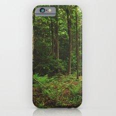 Pathfinder II iPhone 6 Slim Case