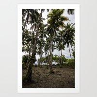 Palm Plantation Art Print