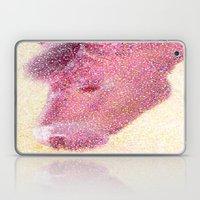 Pony Laptop & iPad Skin