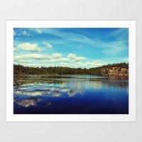 Reflections of nature Art Print