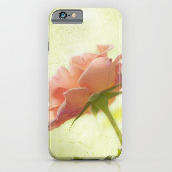 Vintage light pink rose iPhone & iPod Case