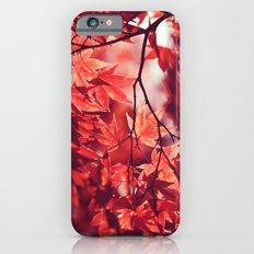Autumn Reds iPhone 6 Slim Case