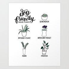 Dog Friendly House Plants Art Print