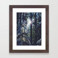 Magic Of Winter  Framed Art Print