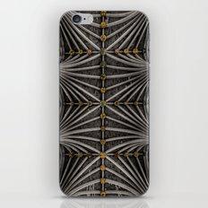 Ceiling bosses iPhone & iPod Skin