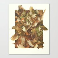 Canvas Print featuring Red-Throated, Black-capped, Spotted, Barred by Teagan White