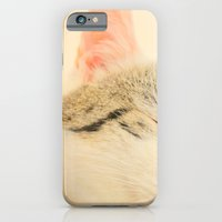 iPhone & iPod Case featuring Peachy Kitty by Clare Cripps