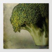 Broccoli - A Portrait Canvas Print