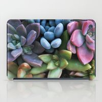 Colorful Succulents iPad Case