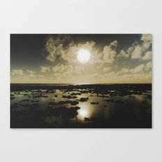 Gold Reef Canvas Print