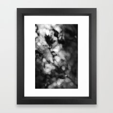 Faded Streams  Framed Art Print