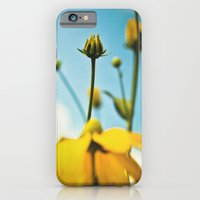Happy day filled with sunshine iPhone 6 Slim Case