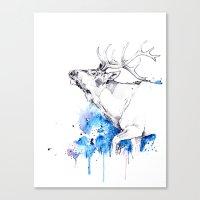 Elk's Whisper II Canvas Print