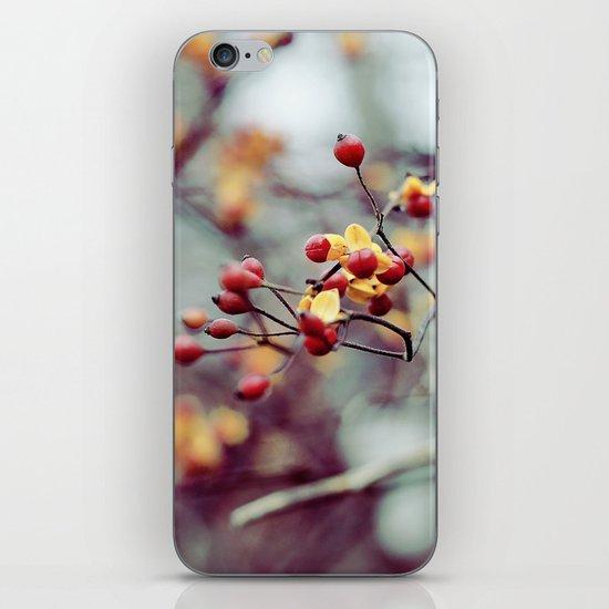 Frozen Fruit iPhone & iPod Skin