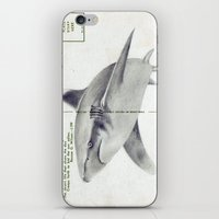 Postcard Shark iPhone & iPod Skin