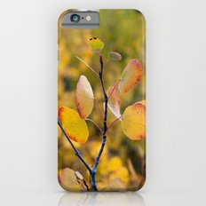 Golden Aspen II Slim Case iPhone 6s