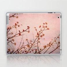 Expectation Laptop & iPad Skin