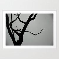 TREE ON JOANNA BALD Art Print