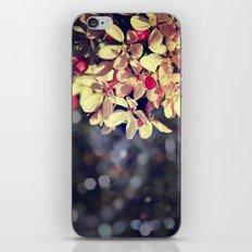 Blossom Bokeh iPhone & iPod Skin